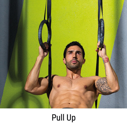 Muscle up Pull up am Ring