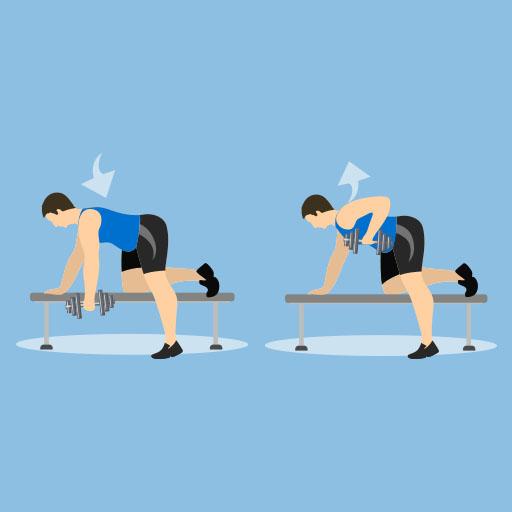 Single Arm Rows - Rückentraining